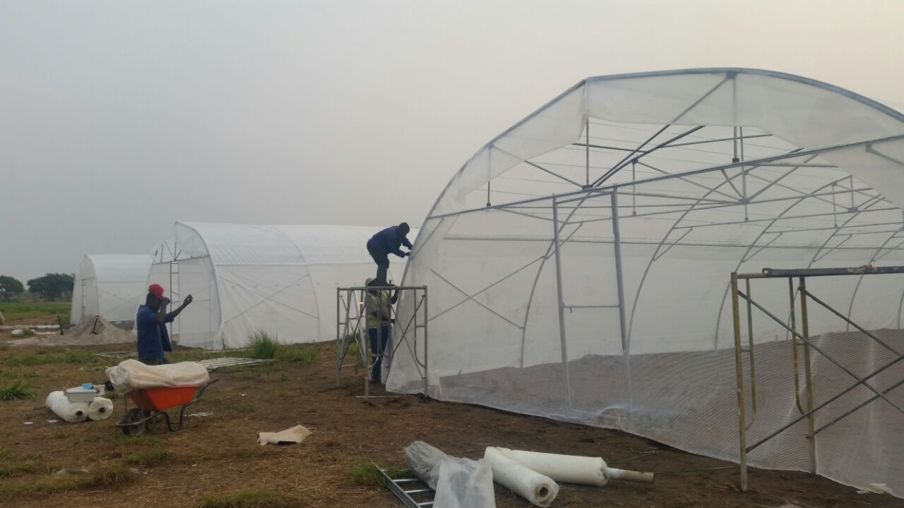 Cover vir 3 greenhouses update